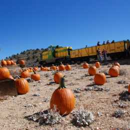 All aboard for the Pumpkin Patch Train